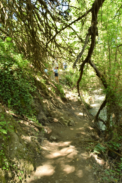 The Cahorros trail will take you along a narrow trail next to the river.