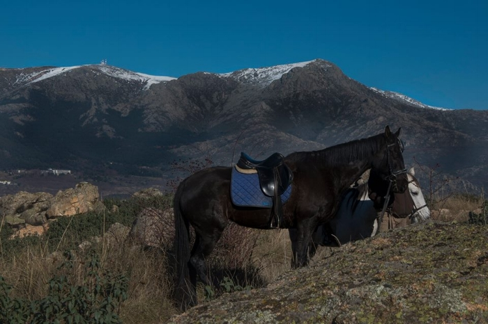 Full day or even overnight horseback riding trips through the Sierra behind Madrid.