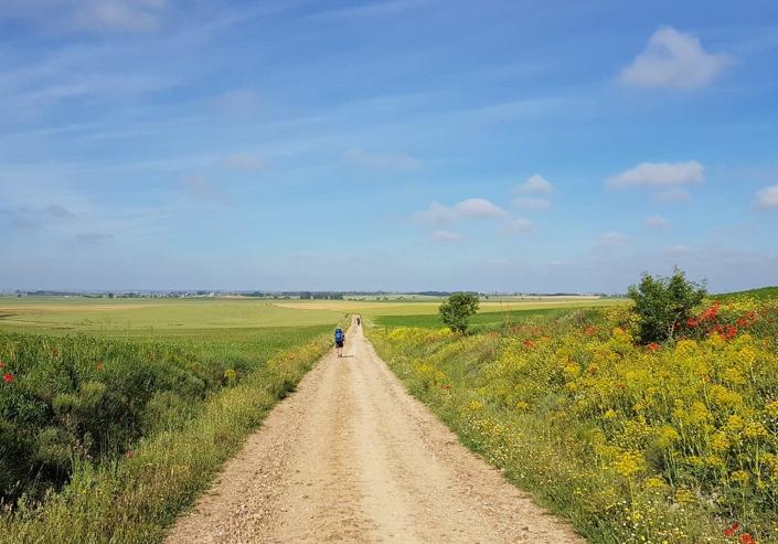 "You've heard ""slow food,"" the Camino de Santiago is the ""slow walk"" across Northern Spain."