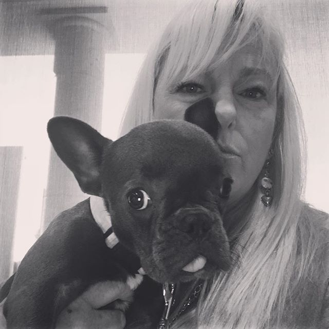 Phyliss to see Dr G. @mrs_bullock_ @melissa_peacelovedogs #frenchieofinstagram #adoptdontshop #rescuerevolution