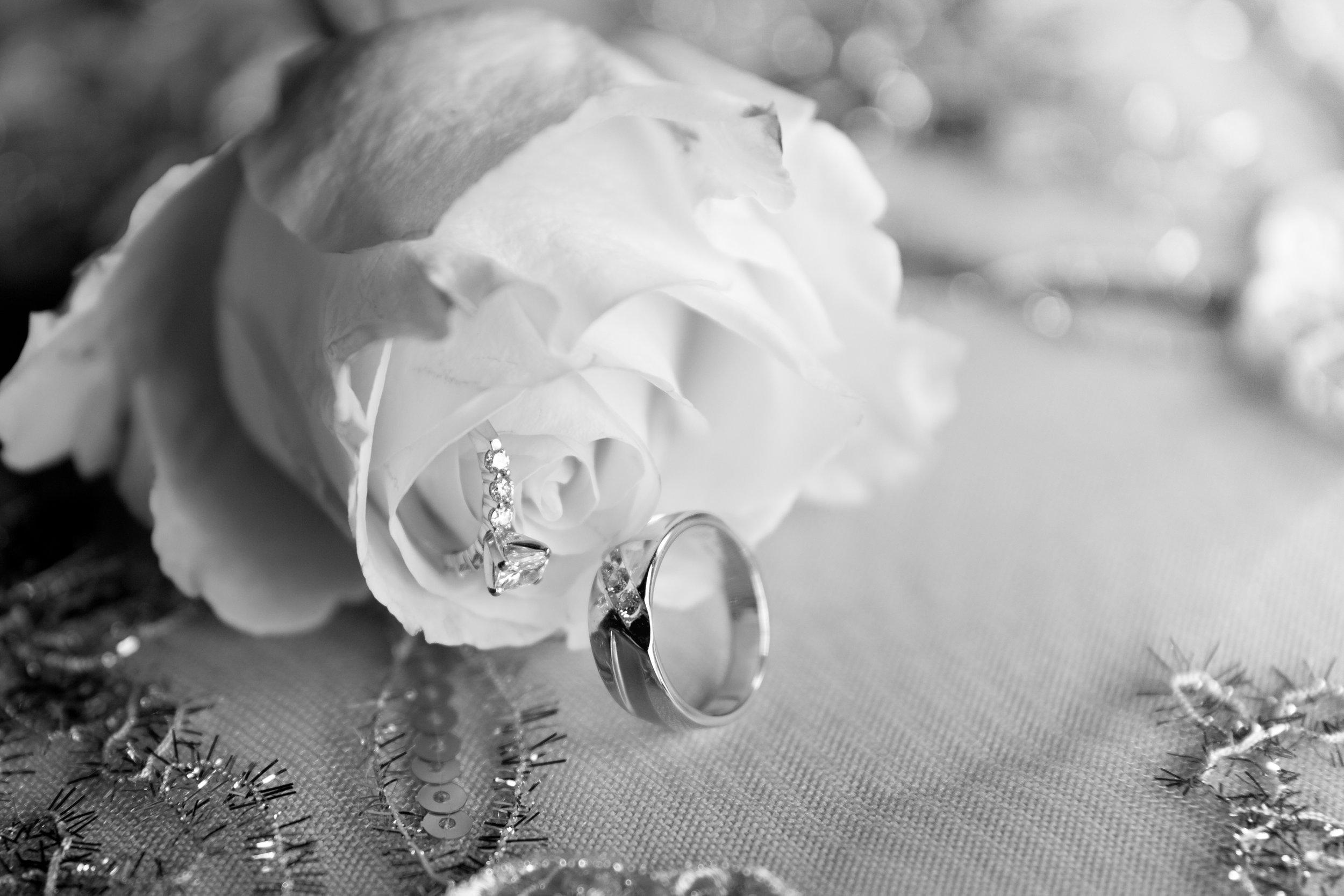 wedding_hoffman-02.jpg