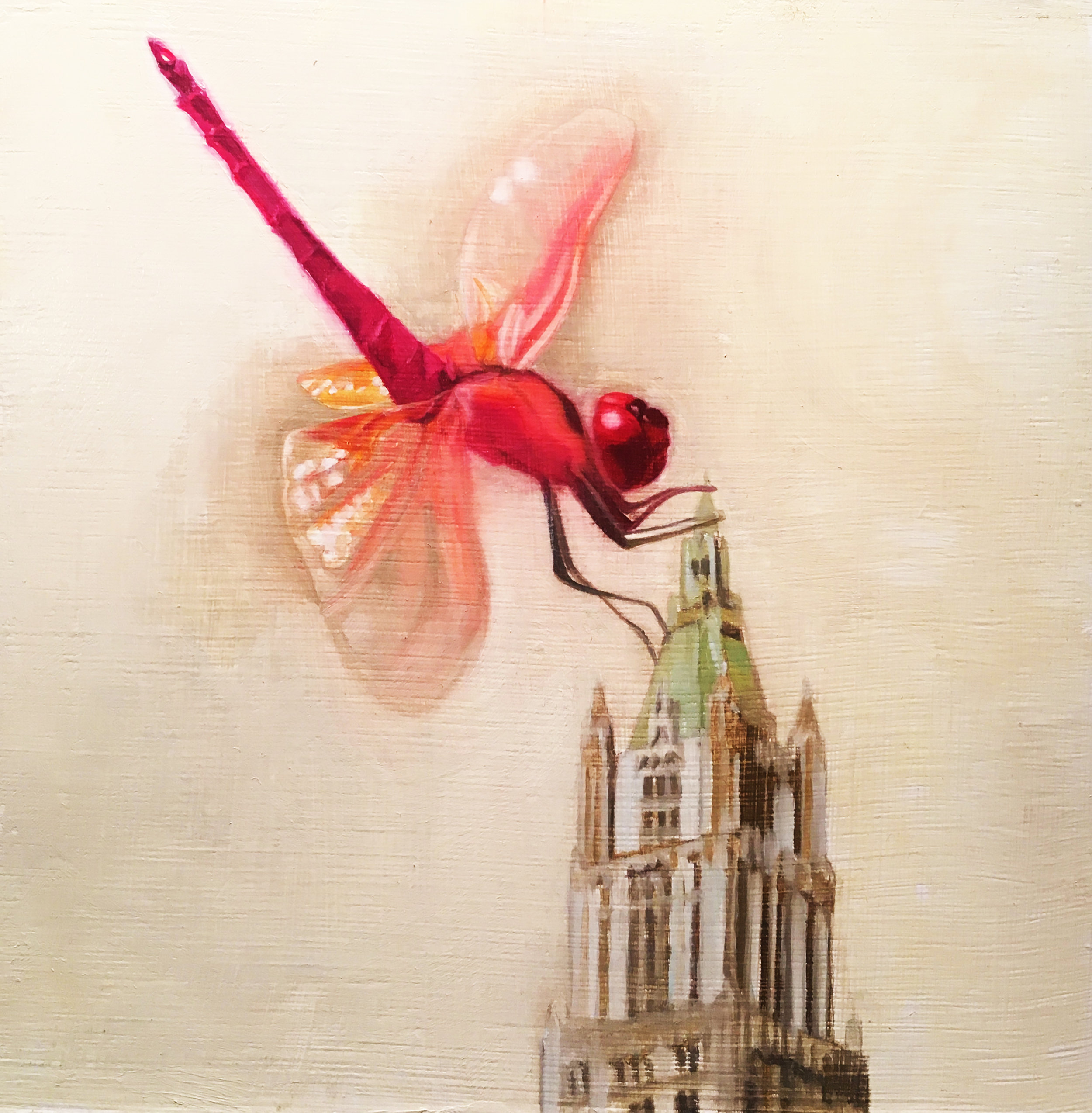The Woolworth Dragonfly.jpg
