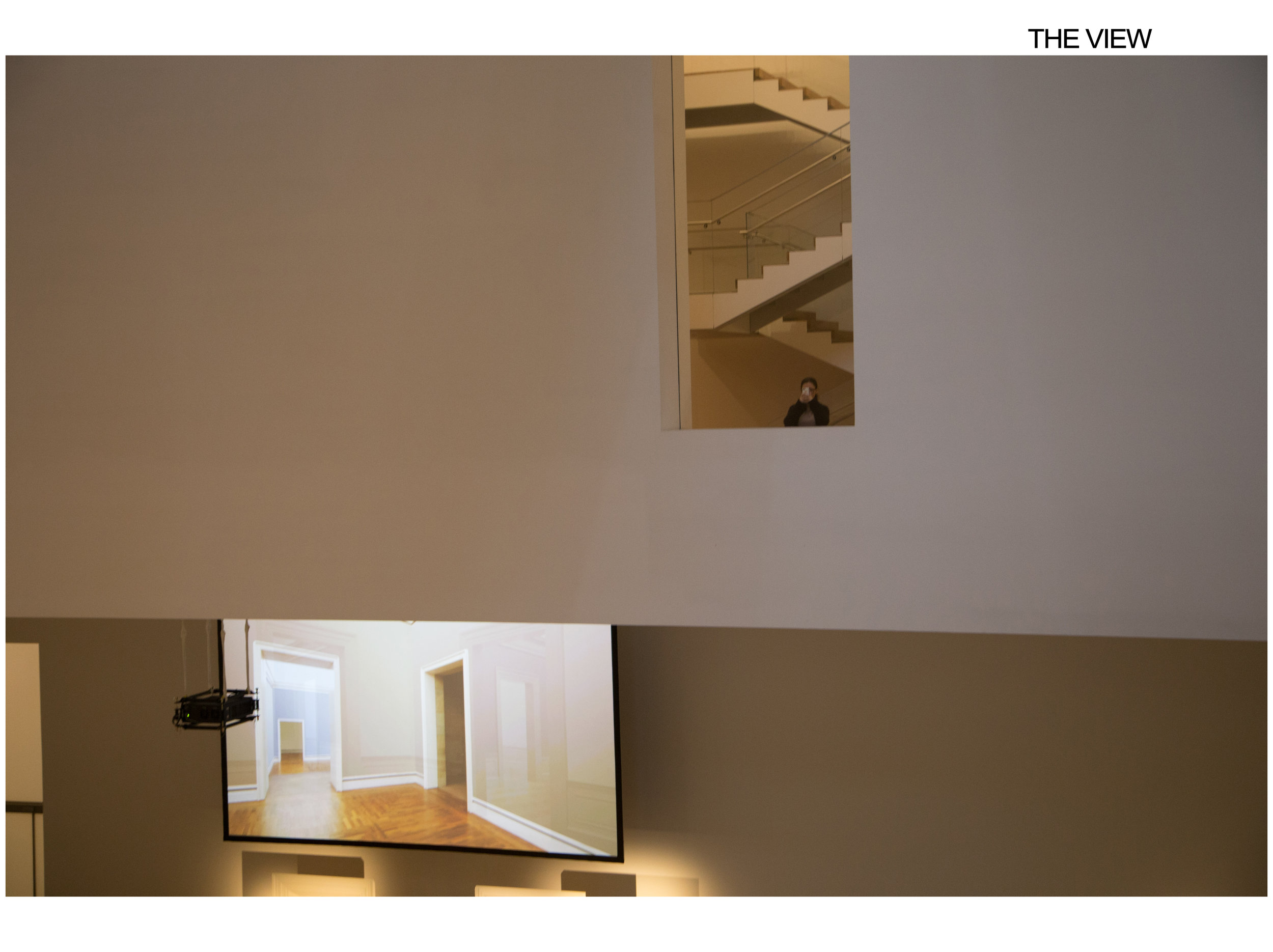 THEVIEW_moma.jpg