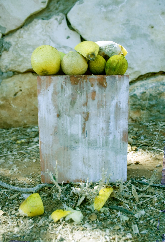 5-a.-Brick-lemons.jpg