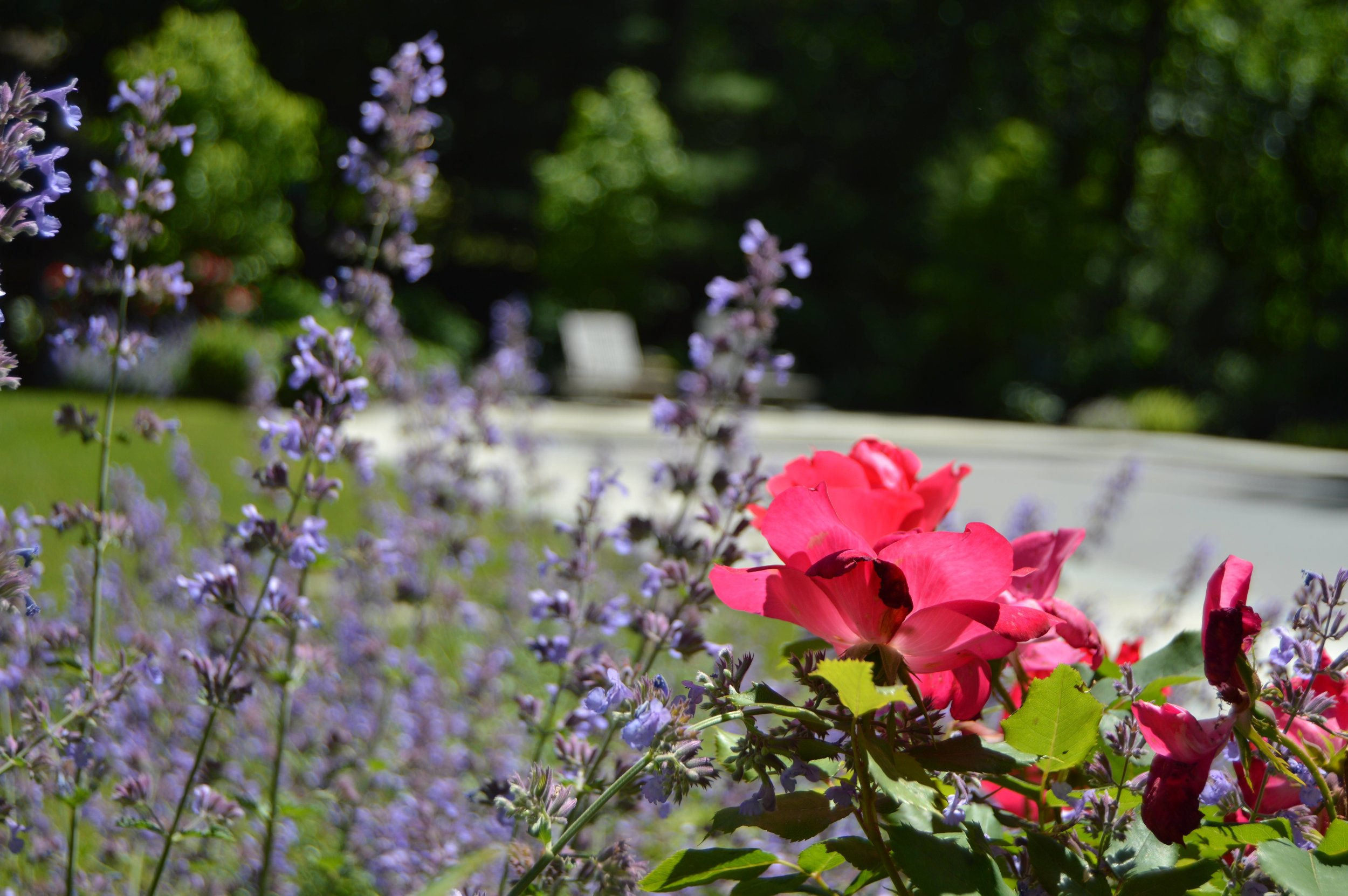 Professional landscape design with flower plantings in Garrison, NY