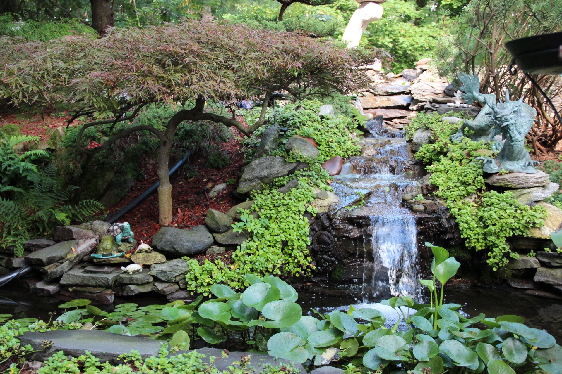 Expert landscape design with water feature in Mt. Kisco, NY