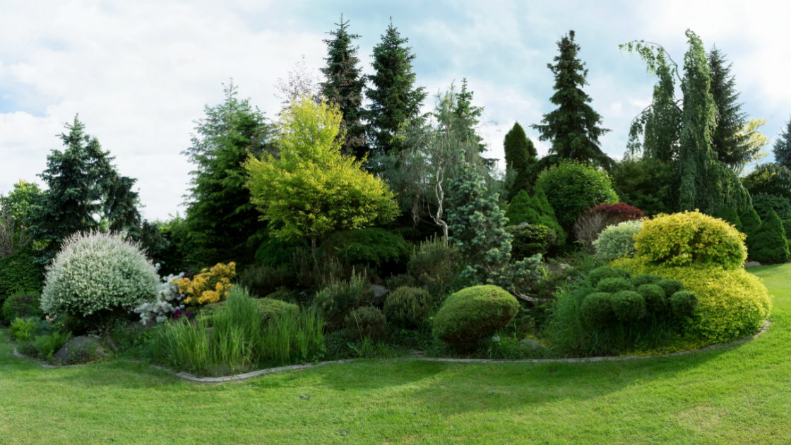 Evergreen Tree Landscape Ideas For Westchester County Masonry Patio Lawn Care Westchester County Ny New York Irrigation Yorktown Ny