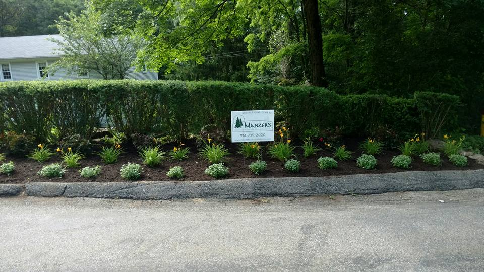 Landscape Ideas for Magical Hedges in Croton-on-Hudson, NY