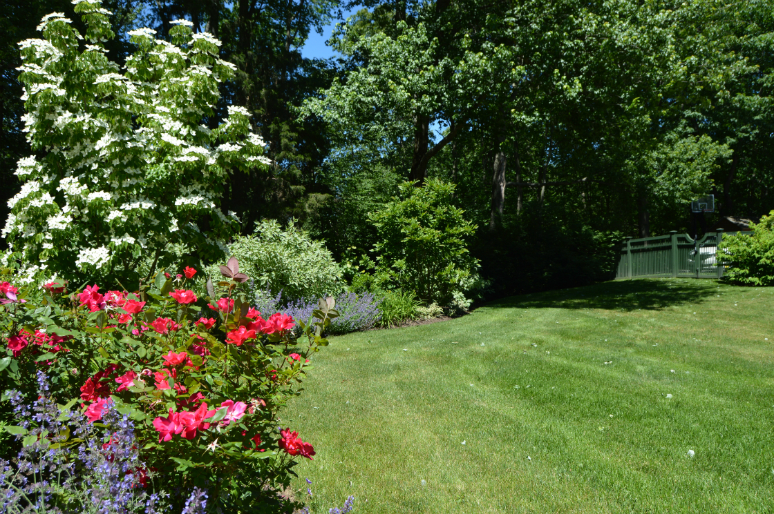 Add Color to your Landscape Design in Somers, NY