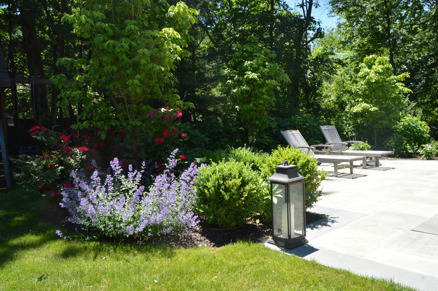 Plantings & S  oftscapes