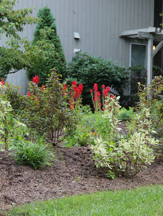Plantings - top landscaping in Somers, Westchester County, New York