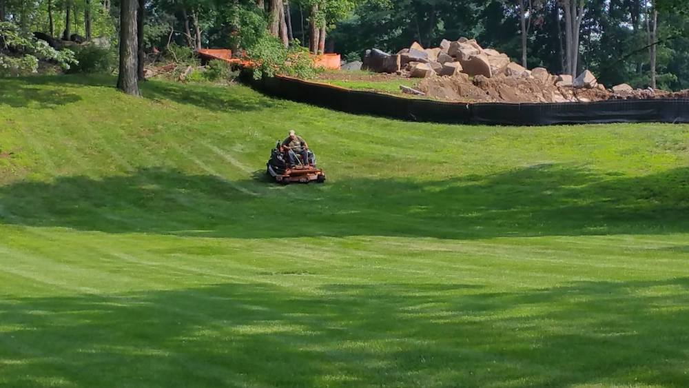 Why Weekly Lawn Care Helps Your Peekskill NY Property Stay Healthy