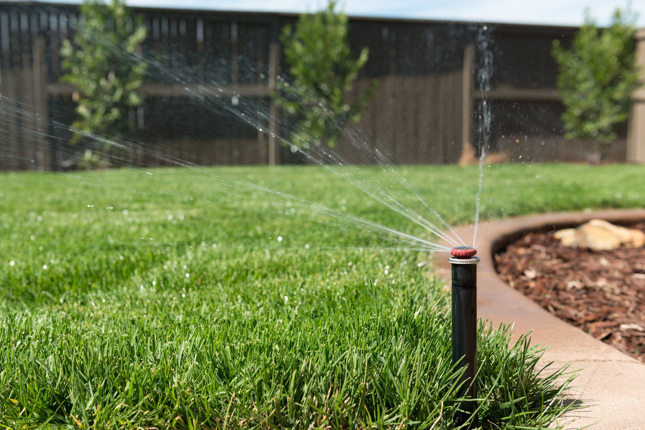 Revitalize Your Landscape After Winter with the Help of a Lawn Care Expert in Briarcliff Manor, NY