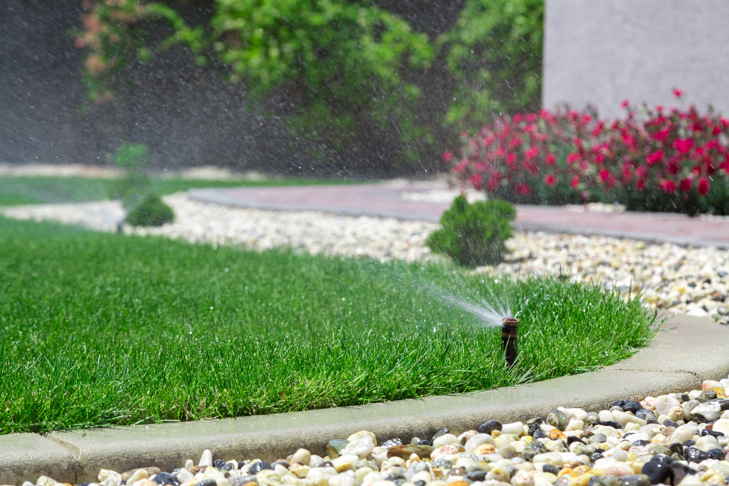 The Value of Irrigation for Your Croton, NY, Landscape