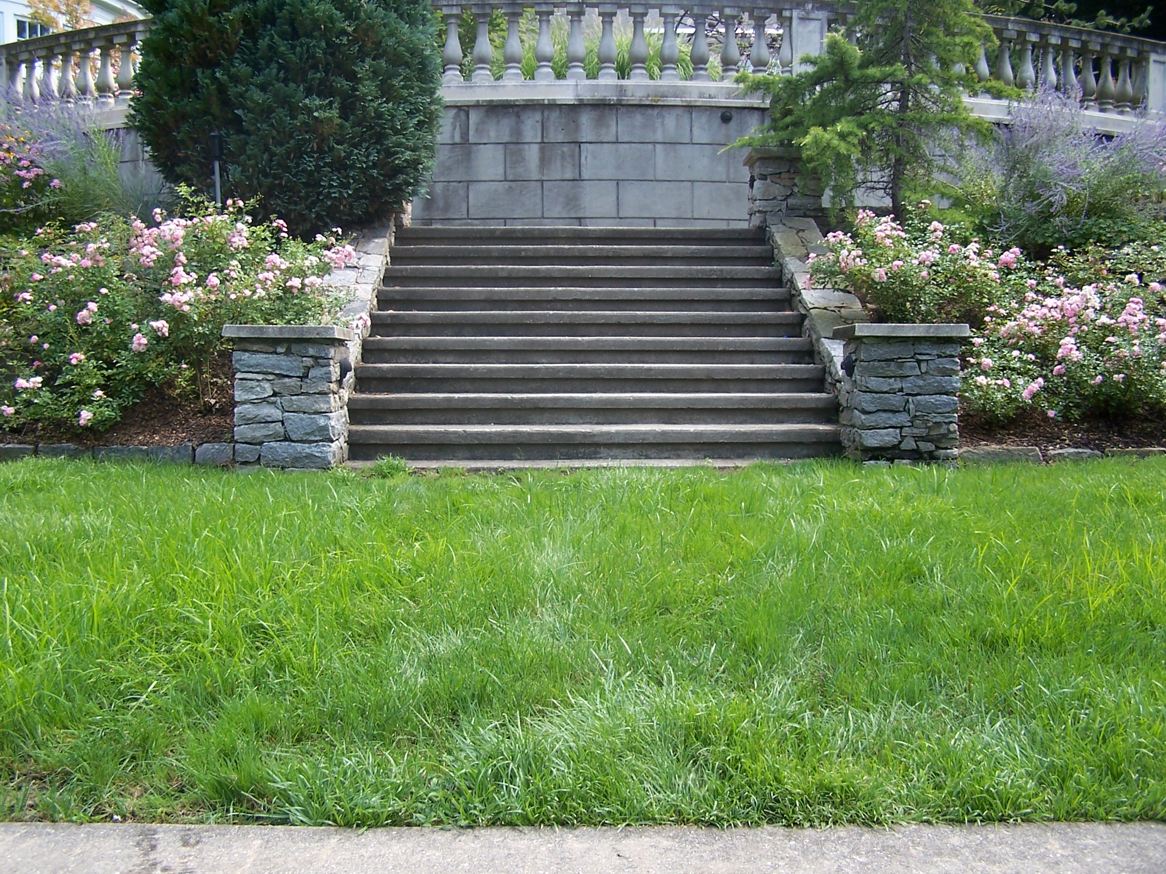 How a Spring Cleanup Lawn Care Service Can Enhance Your Croton, NY, Property
