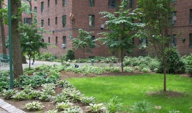 Why Regular Landscape Maintenance Is Important for Commercial Properties in Somers, NY