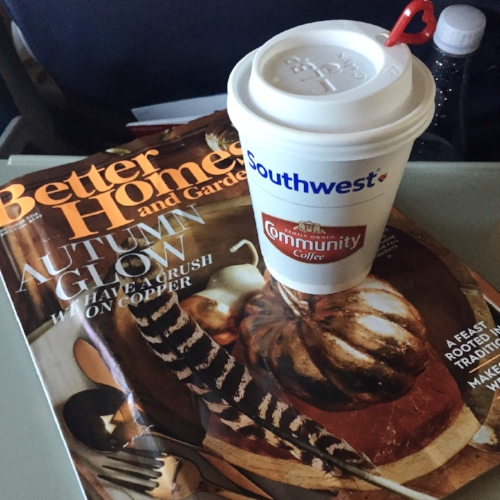 Flying provides ample opportunity to catch up on my magazines.  Fall inspiration?  Don't mind if I do!