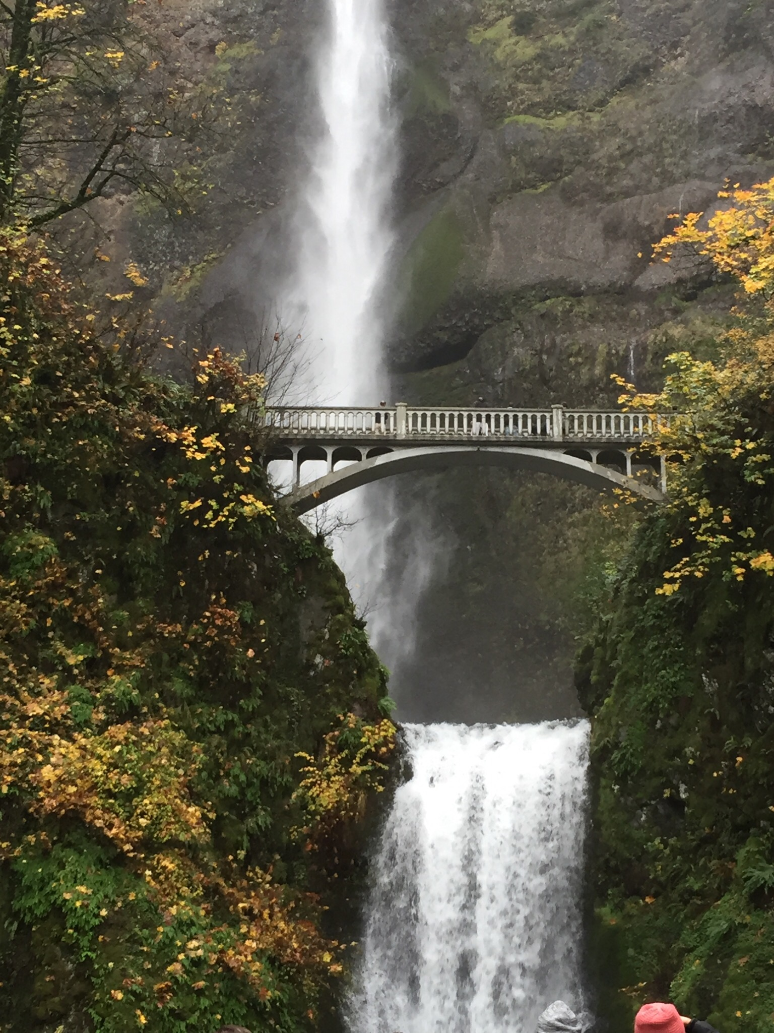 multnomah falls2.jpg