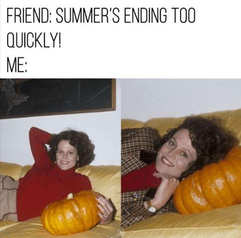 fall meme pumpkin.JPG