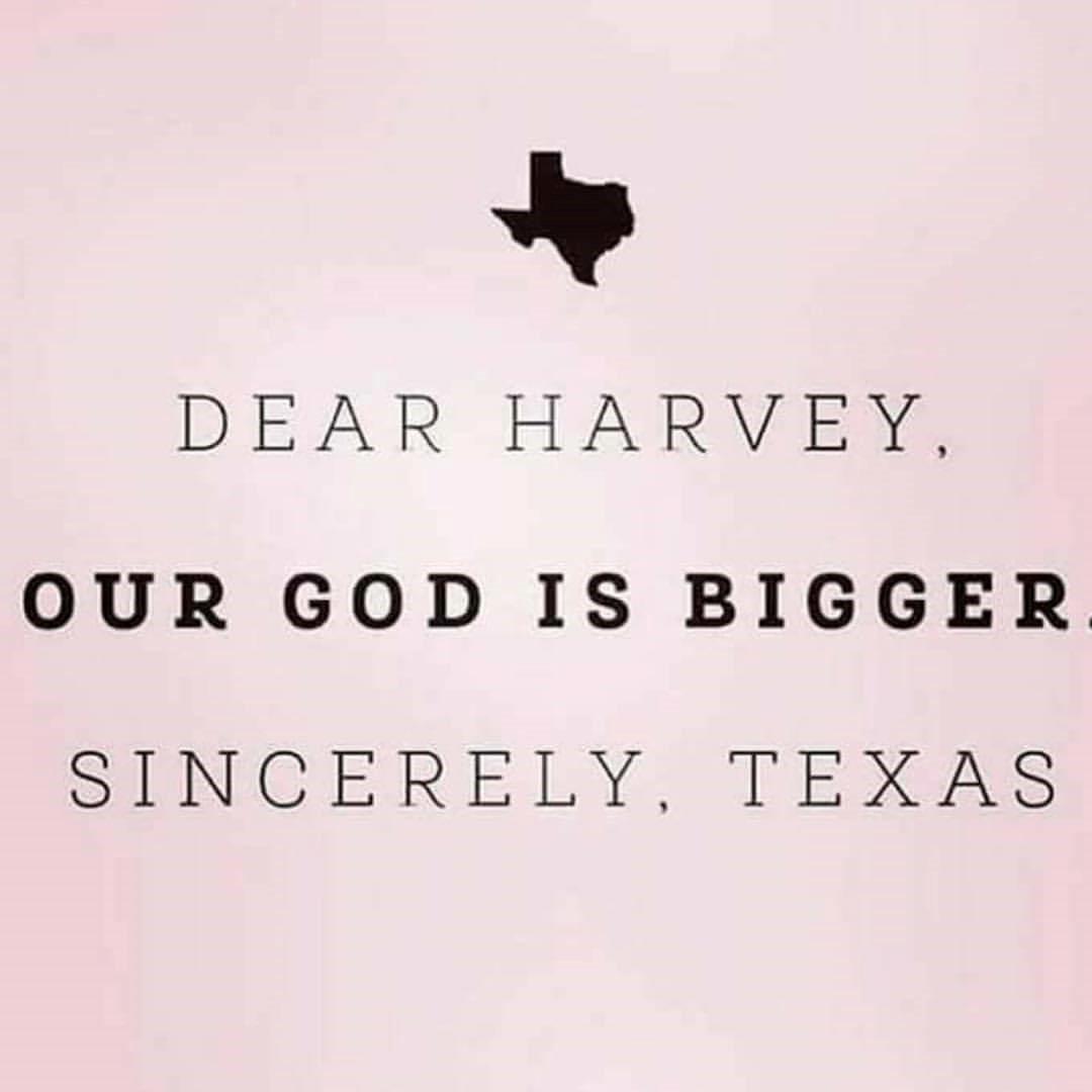 Dear Harvey.jpg
