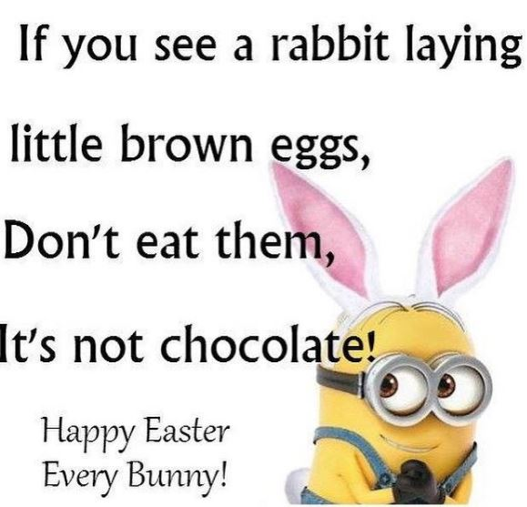 It's not chocolate.JPG