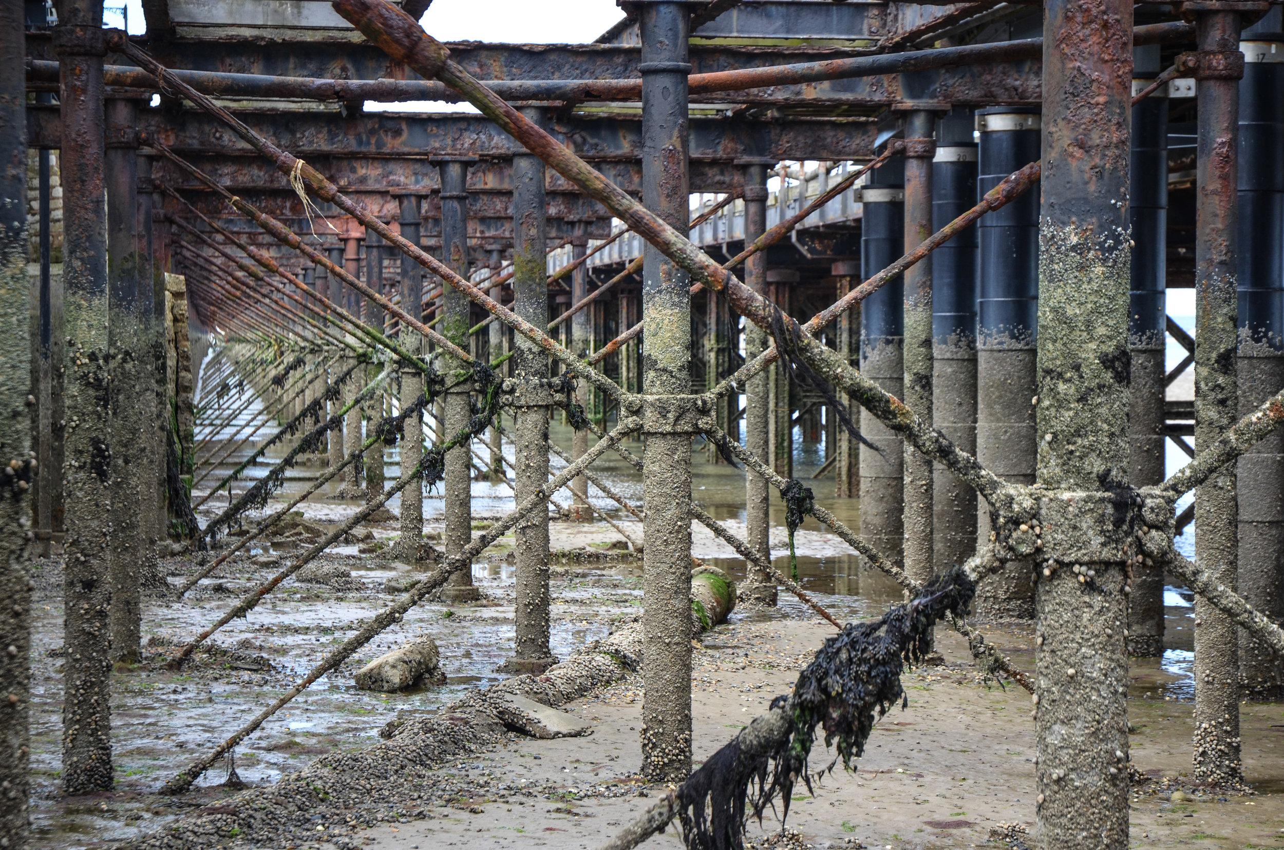 pier-skeleton_14519163011_o.jpg