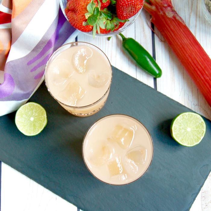 Spicy Strawberry Rhubarb Margarita - Jessica Levinson, MS, RD, CDNCulinary Nutrition Expert