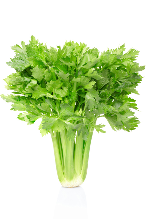 celery and potential health benefits