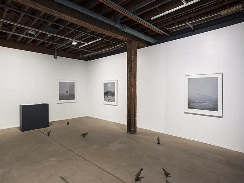 The 19th Biennale of Sydney, Australia, 2014