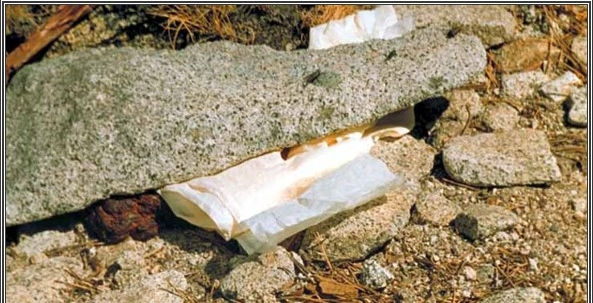 Used tissue paper half-halfheartedly concealed under a nearby rock is a bad example of camp hygiene, but an excellent way to get everyone sick! Way to go.
