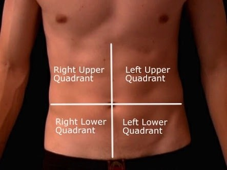 Abdominal_Quadrants
