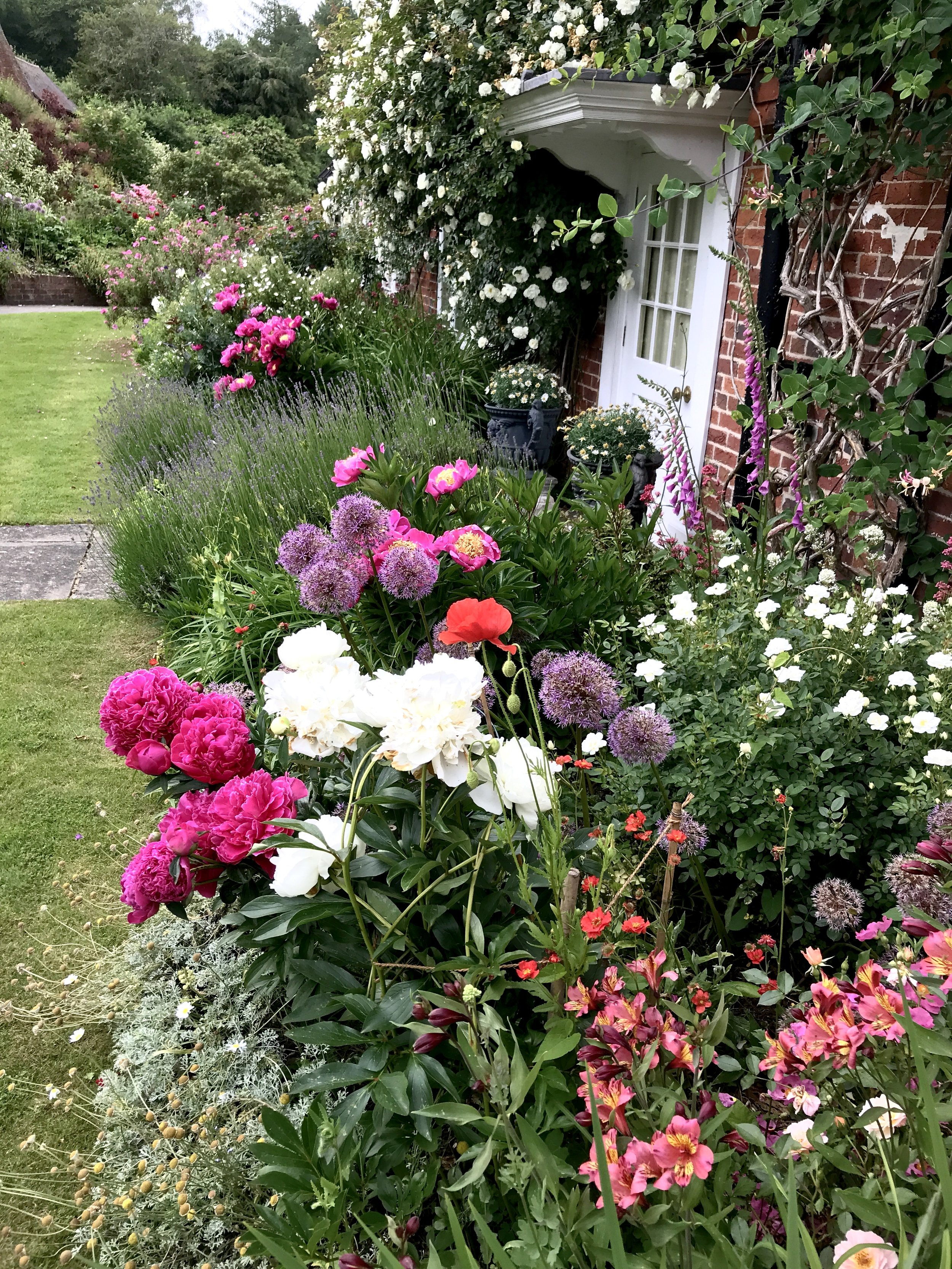 One of the gardens we tend and set up....superb planting.
