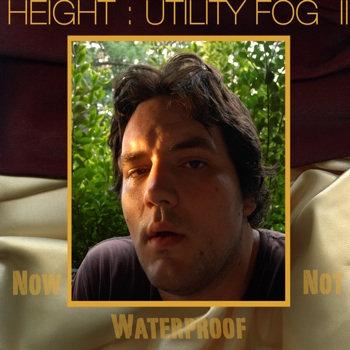 Utility Fog Two (2007)