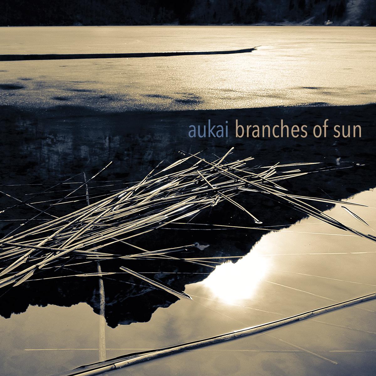 aukai_branches_of_sun_cover_1200x1200.jpg