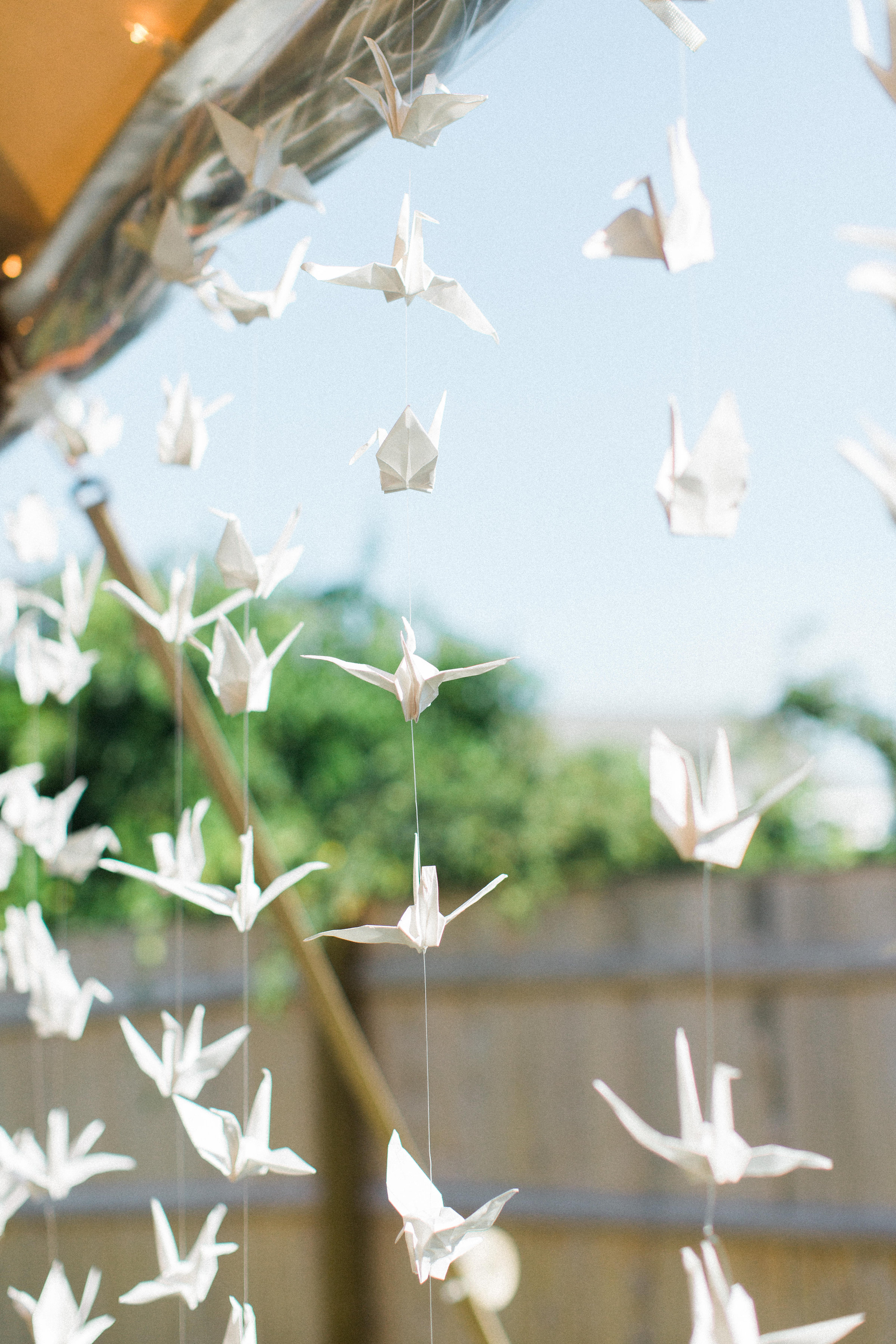 1000 origami paper cranes were strung within the tent for good luck- a nod to the Groom's time stationed in Japan