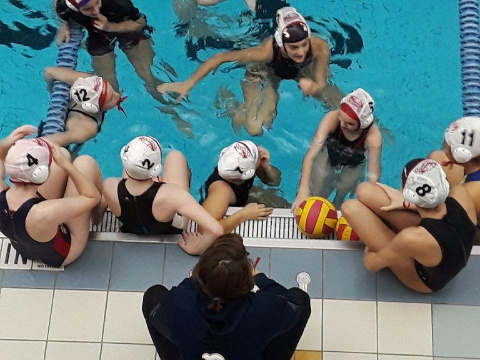 Water Polo IS the World's Most Exciting Aquatic Sport  -