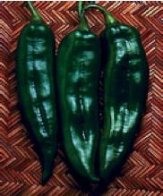 anaheim - Very pungent. Long, tapered dark green fruits 7