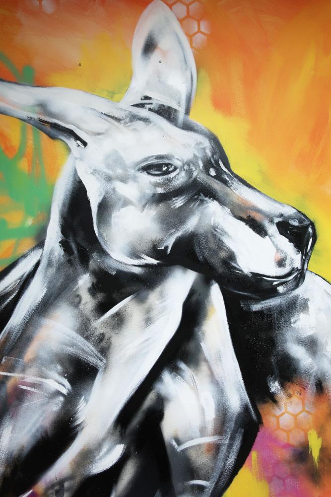 kangaroo-1-w.jpg