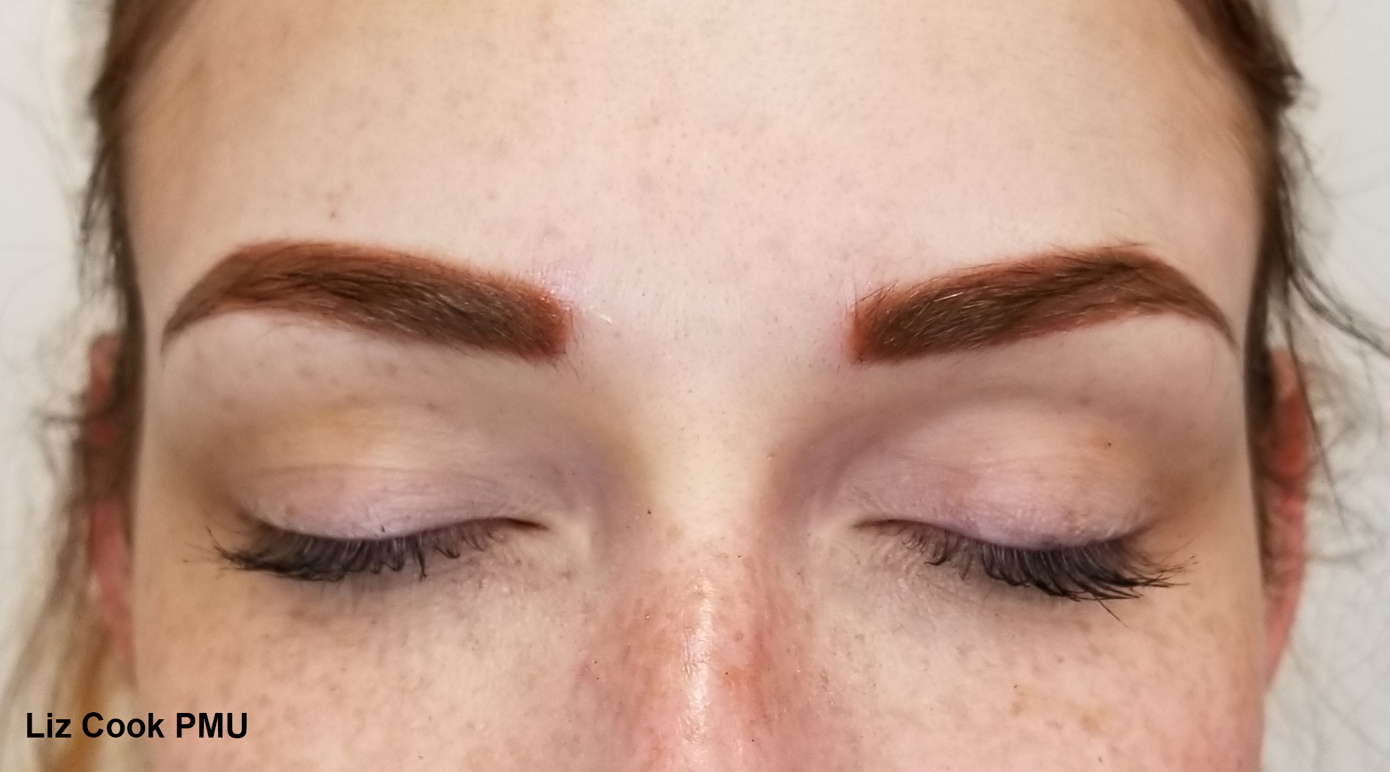 Liz Cook PMU EM Dark Strawberry Blonde Brows Dallas TX Permanent Cosmetics.jpg