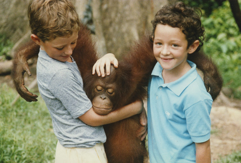 and in the holidays visited the orangutans.