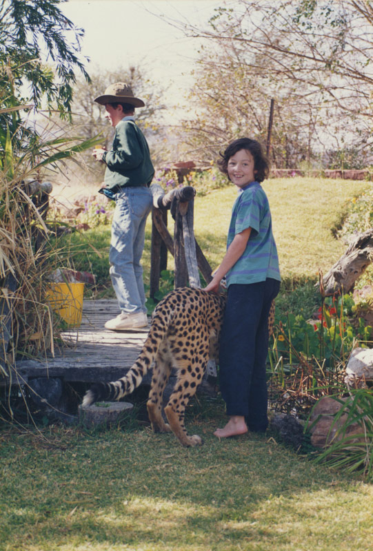 played with cheetahs,