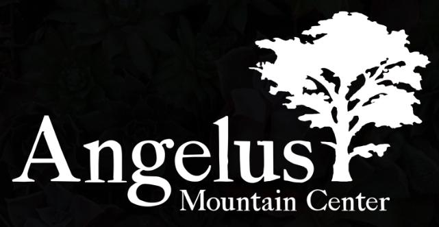 Angelus_logo.jpg