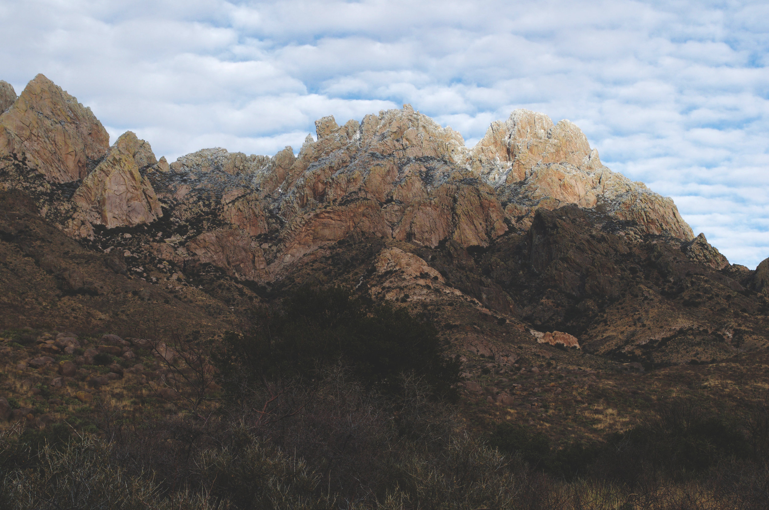 organ mountains 2.jpg