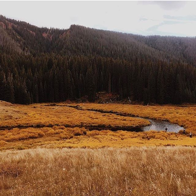 ready for days like these again. hikes through the mountains, pretty oranges and browns. buuuut i'm not ready for the short days. what are y'all excited for this fall? : : : #autumn #autumnvibes #halloween #hikes #outdoors #colorado #fall #magic #denvercolorado #magicmoments #leaves #leaveschanging #october #autumnvibes🍁 #getoutdoors #hiking #coloradohikes #denver #forest #woods #moodygram