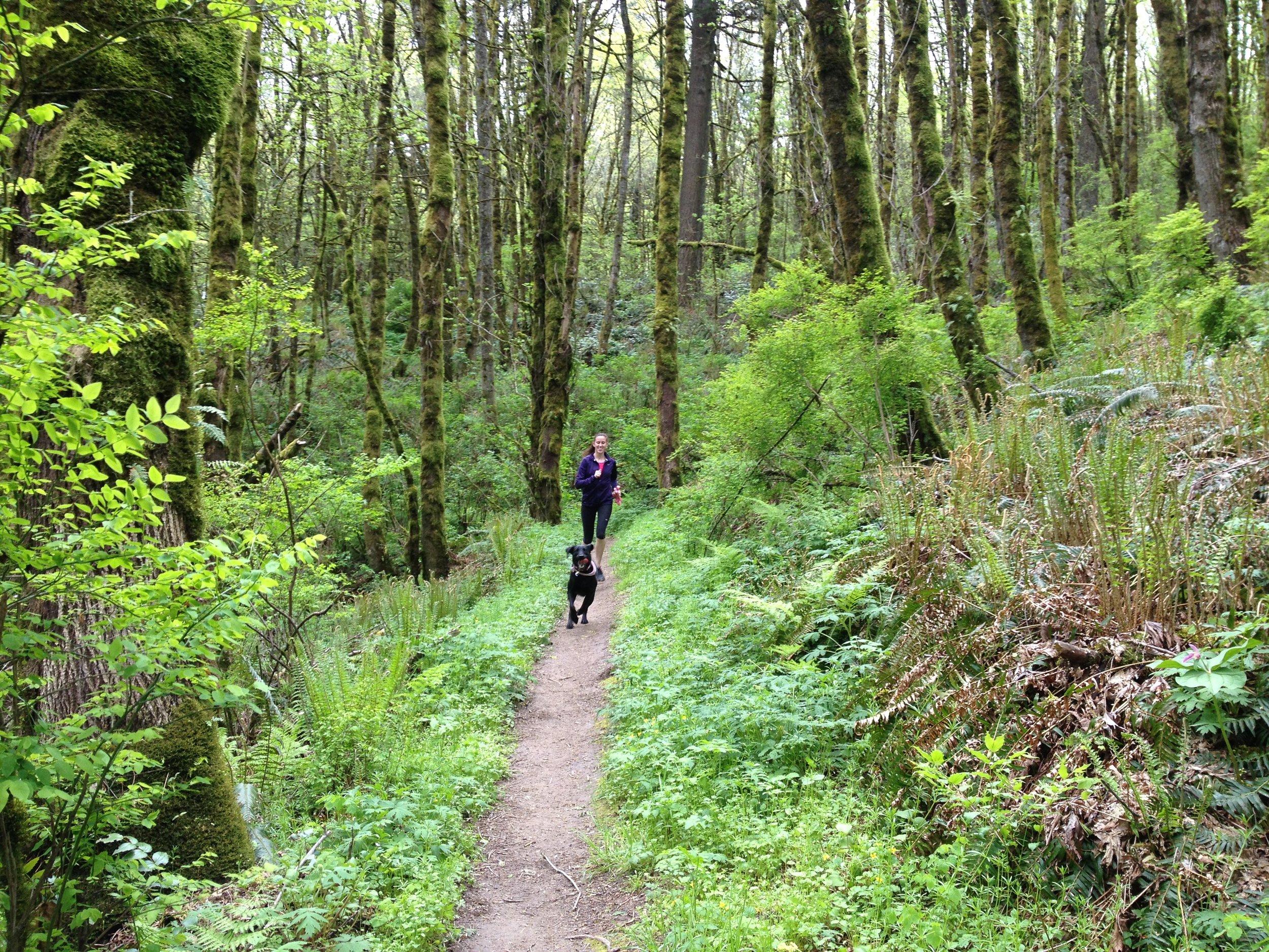 Erin Fortin Photography_Wildwood Trail.JPG