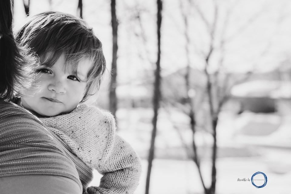 Ottawa Babywearing Photography toddler in Stewed Rhubarb Handmade Wrap.