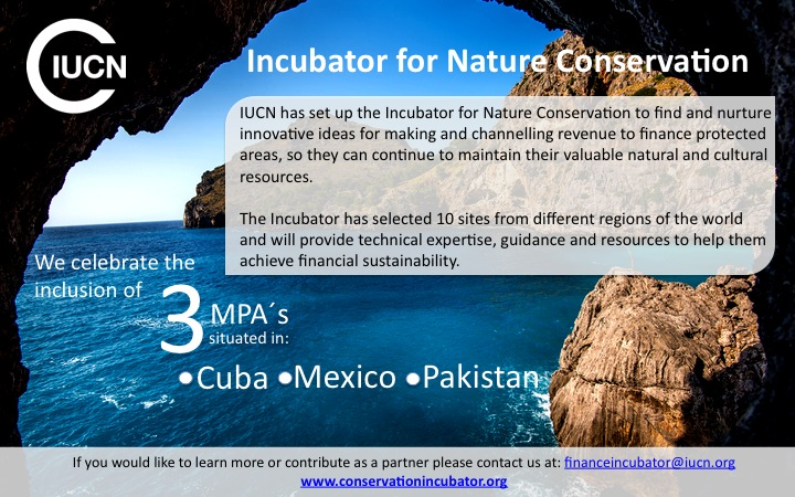 INC flyer.jpg