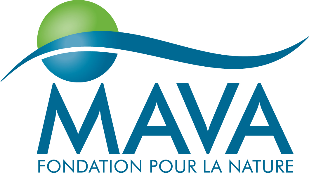 MAVA_logo_for_Office.jpg