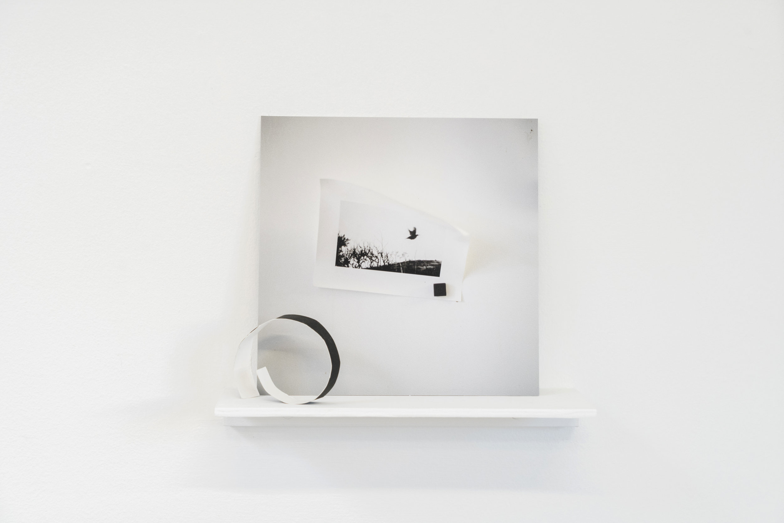 Elizabeth Bernstein,  Something opened…,  2017, Archival pigment print, aluminum, wood, 10 x 8 x 3 inches.