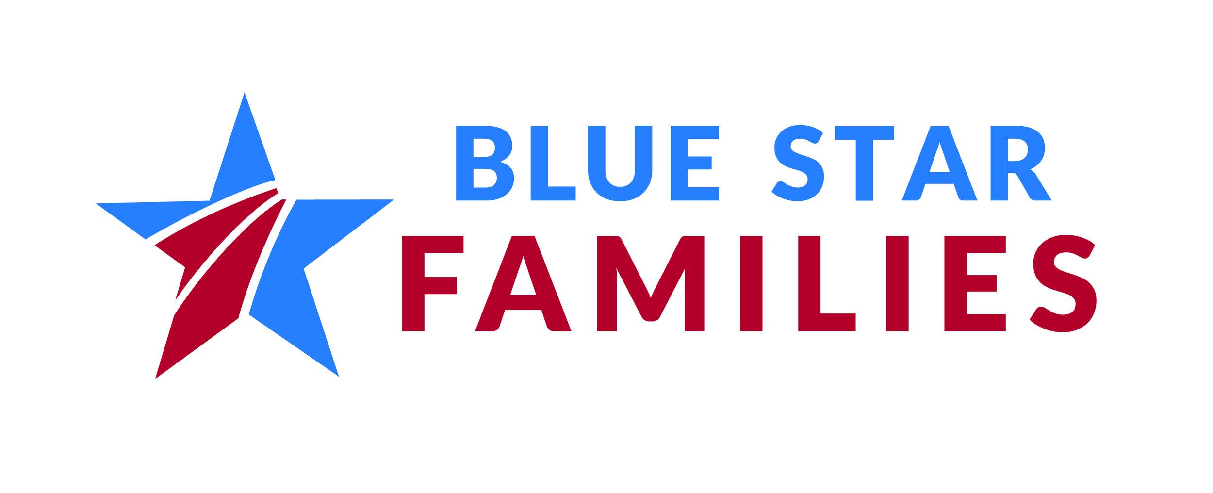 BSF-Logo-Vertical.jpg